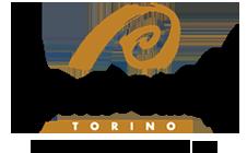 logo Ometto